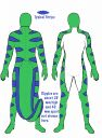 Rapido051_-_Rubber_Costume_Ref_Sheet.jpg