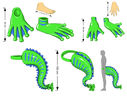 Rapido140e_-_Froggy_Hands_Tail___Feet_Ref.jpg